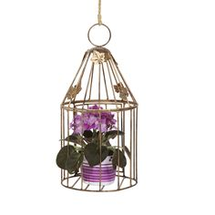 Gaiola de Ferro Decorativa. Crie um clima atraente e moderno, encha-o com flores. Dê vida ao seu jardim.