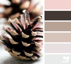 Pink Succulent Design Seeds 54 Ideas For 2019 Pink Color Schemes, Colour Pallete, Color Combos, Color Palettes, Pink Succulent, Succulent Care, Paper Succulents, Cream Aesthetic, Cream Wallpaper