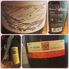 Mencía Ribeira de Valboa #Chantada #RibeiraSacra #Lugo #Spain by anamurmar via Instragram