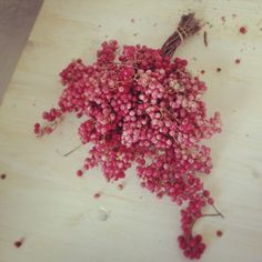 Pink pepper fever