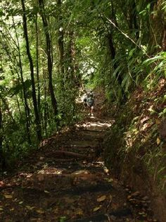 Hiking to Middleham Falls, Dominica.