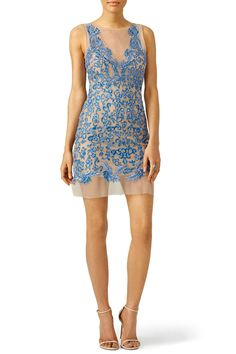 Royal Blue Floral Tulle Dress by Nicole Miller for $70 | Rent the Runway