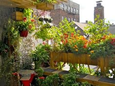 Rooftop garden with bench and BBQ grill