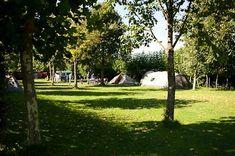 Weekender, Go Camping, Outdoor Life, Caravan, Dolores Park, Sidewalk, Plants, Travelling, Baby
