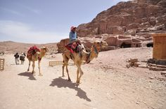 Don't miss taxi of the petra