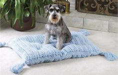 Pet Pillow Crochet, I need to do this, or have someone make this for me pups!