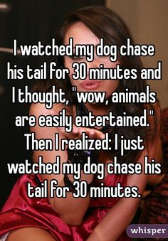 """I watched my dog chase his tail for 30 minutes and I thought, ""wow, animals are easily entertained."" Then I realized: I just watched my dog chase his tail for 30 minutes.""<<<honestly I can relate Haha, Whisper Quotes, Funny Quotes, Funny Memes, Hilarious Jokes, Whisper Confessions, Funny Pins, Funny Stuff, Random Stuff"