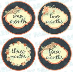Monthly Baby Stickers Baby Month Stickers Baby Girl by babyfables, $8.75
