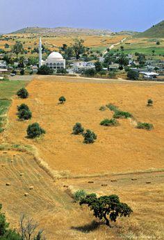 Yarkoy Village, Kirpasa Peninsula, Turkish Cyprus