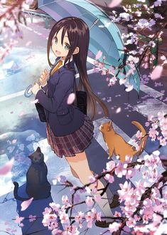 Anime / Manga School Sakura Blossom Black Cat Orange Cat Cute Kawaii