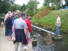 Halte démonstration à la pisciculture de la Boissonie.