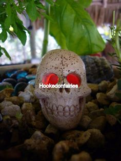 Miniature LED Light Up Skull FA83 Color Changing Fairy Garden Dollhouse | eBay