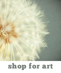 dandelion art print  (thank you photoaddict for pinning!)