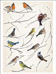Wallstickers, birds/ Muurstickers Vogeltjes