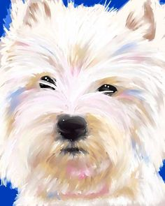 Westie print, by B. Rubenecker, Michigan