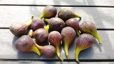 Vijg - Diana's mooie moestuin Ficus, Edible Garden, Eggplant, Diana, Fruit, Vegetables, Lunch, Shadows, Eat Lunch
