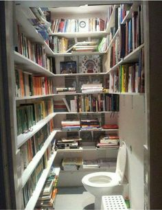 Book lovers perfect bathroom