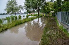 Starkregen hat die Wasserstände an Rhein und Bodensee in Baden-Württemberg auf kritische Werte ansteigen lassen.  Foto: SDMG