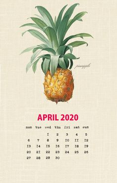 Botanical Fruit 2020 Calendar Printable Templates culinary Fruits Monthly Planner In botany Aggregate fruit Ovary Latest Designs 12 Months Yearly One Page Free Printable Calendar Templates, Printable Calendar 2020, Blank Calendar Template, Print Calendar, 2019 Calendar, Calendar Design, Calendar Ideas, Calendar Wallpaper, Painting Wallpaper