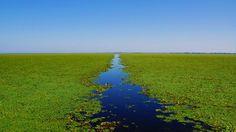 Delta Dunarii  25 de poze din frumoasa Romanie (partea 1).  Vezi mai multe poze pe www.ghiduri-turistice.info  Sursa : pixdaus.com
