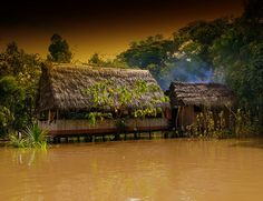 Native Home On The Amazon RIver by Butch Osborne