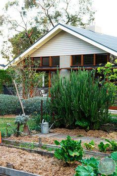 Top 3 Autumn gardening tips Garden Nook, Garden Beds, Lawn And Garden, Home And Garden, Gardening For Beginners, Gardening Tips, Australian Garden, Backyard, Patio