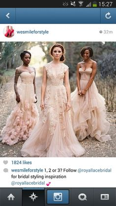 Bridesmaids dream