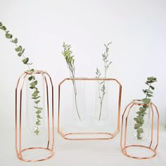 Creative hanging test tube transparent glass vase simple hydroponic flower home decoration indoor gardening decoration - Taobao