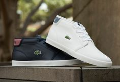 Lacoste Ampthill LIN