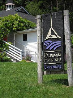 Pelindaba Lavender Farm - San Juan Island, Washington