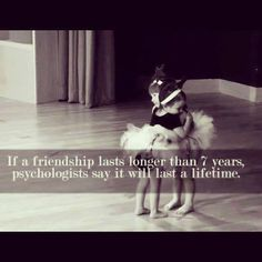 Happy 20 years of friendship, Wollesen ! Love you, my BFF Great Quotes, Me Quotes, Funny Quotes, Inspirational Quotes, Qoutes, Friend Quotes, Motivational, Quote Friends, Fantastic Quotes