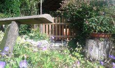 Dettaglio dal nostro giardino laghetto
