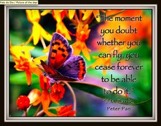 The moment you doubt whether you can fly...