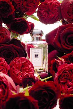 Las mejores ediciones limitadas de belleza para San Valentín: Red Roses, de Jo Malone