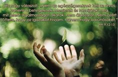 Mt 9, 12-13 Irgalmasságot akarok Awakening, Holding Hands, Mindfulness, In This Moment, Motivation, Touch, Meaning Of Life, Author, Messages
