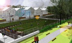 Chicago's urban farm district could be the biggest in the nation
