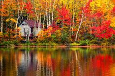 Forget New England: Fall foliage in New Brunswick, Canada