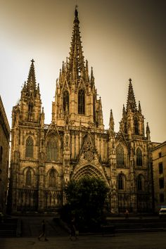 La Seu Cathedral  (Catedral de la Santa Creu i Santa Eulalia)   Barcelona   Gothic Architecture