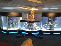 Crazy aquariums on Tanked on Animal Planet - Robot Tank.