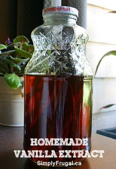 Homemade Vanilla Extract.  Perfect for gift giving!