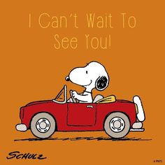 Can't wait to see you.