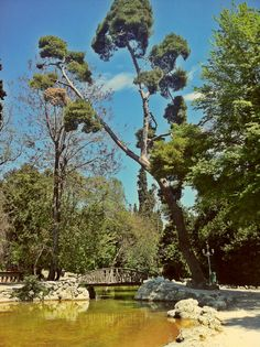 The main lake of the National Garden. (Walking Athens, Route 06 - National Garden)