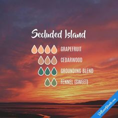 secluded island diffuser blend