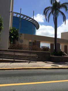 Autoridad de Energia Electrica, Ave. Juan Ponce de Leon. En el Articulo V dice que solo las banderas seran usadas en días laborables.