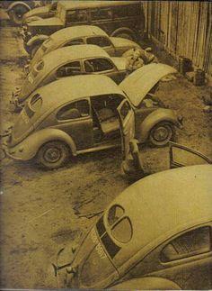 Volkswagen Factory, Old Bug, Kdf Wagen, Hot Vw, Vw Vintage, Ferdinand Porsche, Vw Bugs, Abandoned Cars, Weimaraner