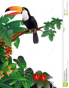 toucan-bird-illustration-22241697.jpg (1016×1300)