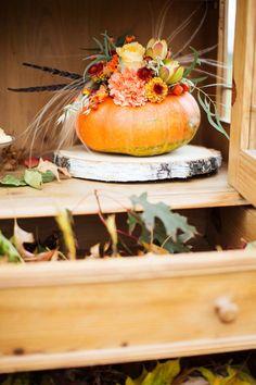 Fall Wedding, Wedding Photography, Autumn, Fruit, Blush Fall Wedding, Fall Season, 秋のウェディング 装飾, Fall, Wedding Photos