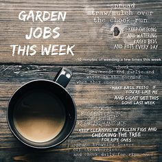 These are the jobs we are doing this week in our garden.