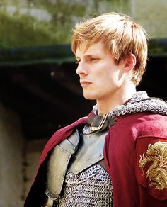 1000 Images About Merlin