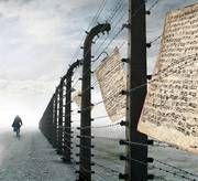 Commemoration in Memory of the Victims of the Holocaust 2017     United Nations Educational, Scientific and Cultural Organization